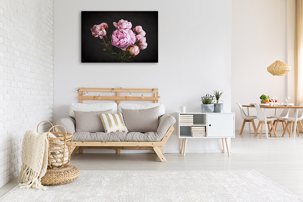 Vivid Blooming Peonies Photo Wall Arts