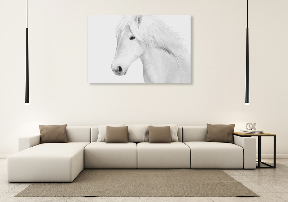 White Horse Wall Art Print