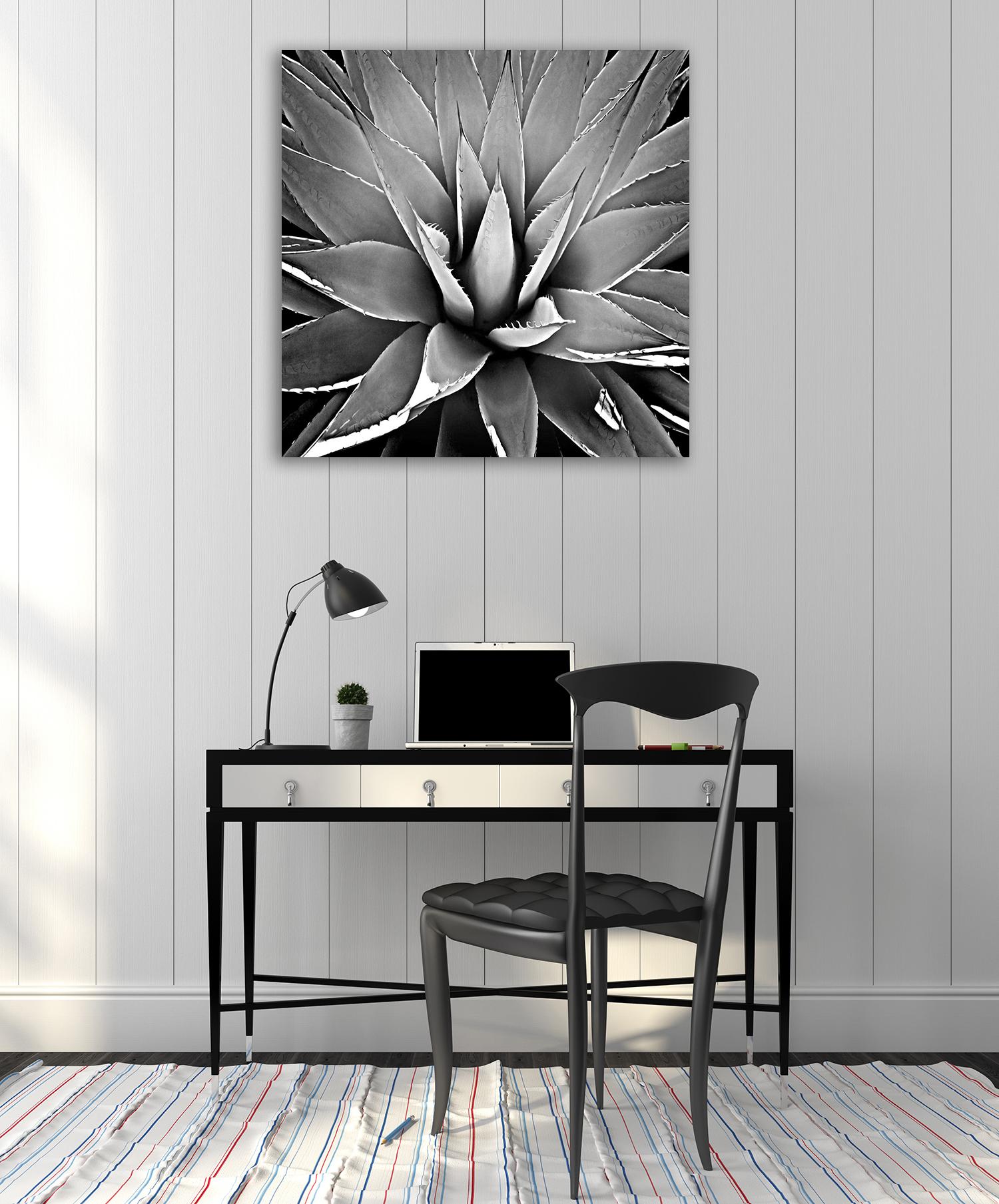 Australia Black and White Print