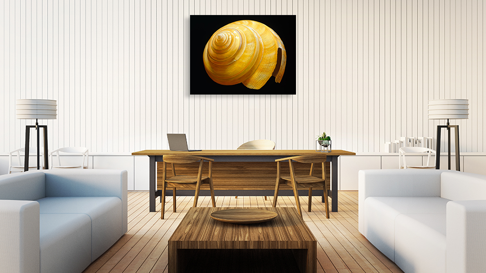 Landscape Photography Wall Print