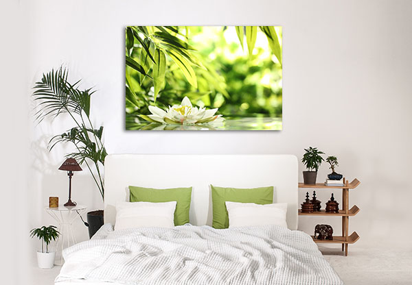 Water Lily Float Prints Canvas