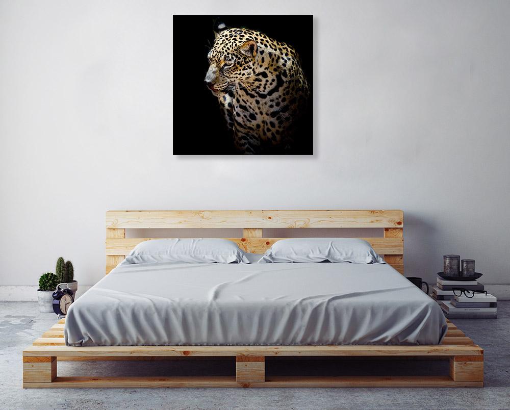 Contemporary Animal Photography Print