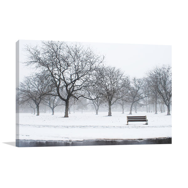 Winter At The Park Canvas Prints