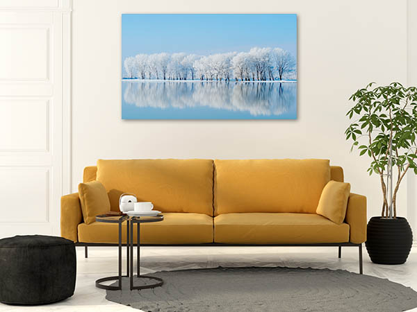 Winter Reflections Canvas Prints