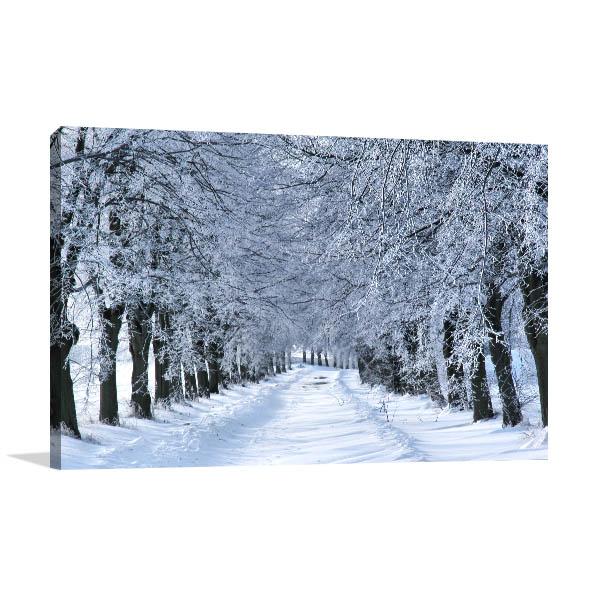 Winter Tree Alley Canvas Art
