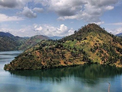 Rwanda Full City Roast
