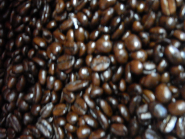 Organic Sumatra Mandheling French Roast - 12 oz.
