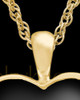 Ash Keepsake 14k Gold Ebony Heart Keepsake