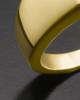 Men's 14K Gold Beguiling Black Onyx Cremation Ring