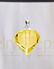 Golden Teardrop Glass Reflection Pendant