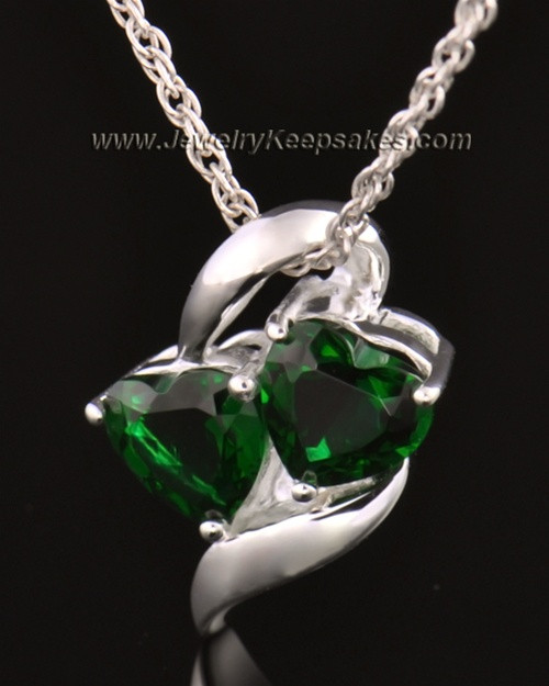 14k White Gold Envious Cremation Necklace