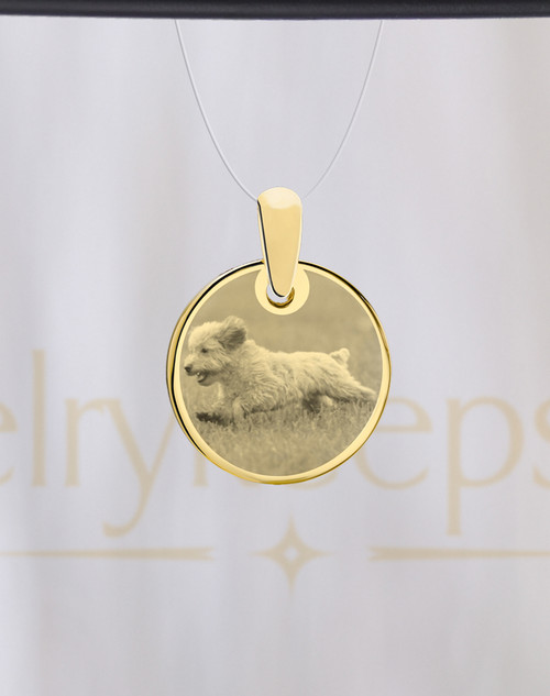 Round Gold Pet Picture Reflection