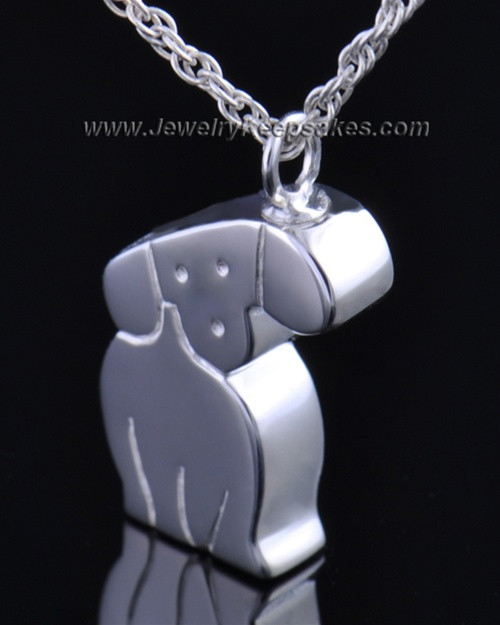 Sterling Silver Cremation Urn Pet Necklace Best Friend Dog