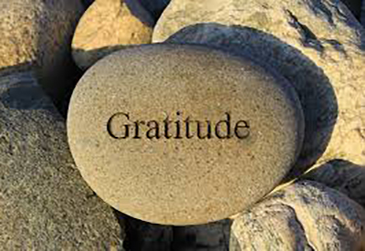 Grow From a Place of Gratitude