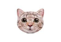 Curious Cat Island