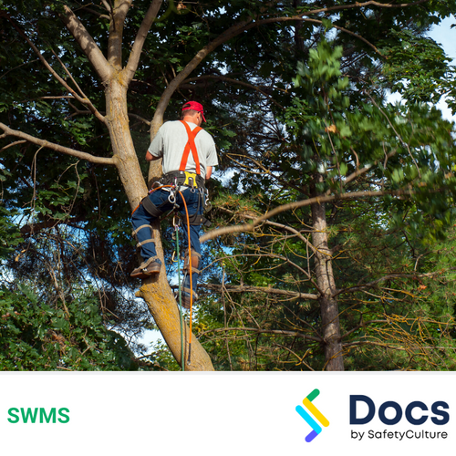 Tree Work (Aerial) SWMS | Safe Work Method Statement