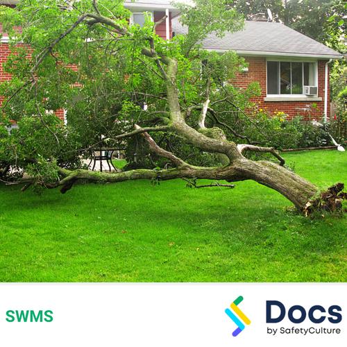 Make Safe (Tree Removal) SWMS | Safe Work Method Statement