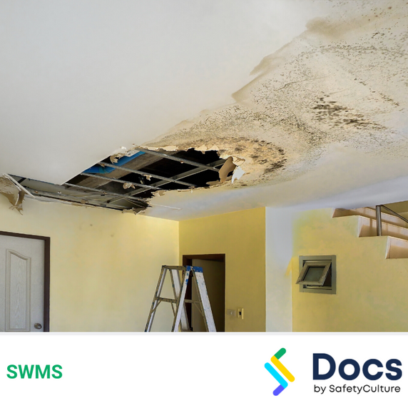 Make Safe (Secure Ceilings) SWMS | Safe Work Method Statement