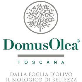 domus-logo.jpg