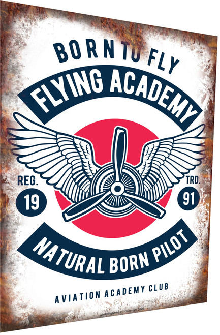 Aviation Sign Born To Fly Academy White Rusty Look Parking Sign
