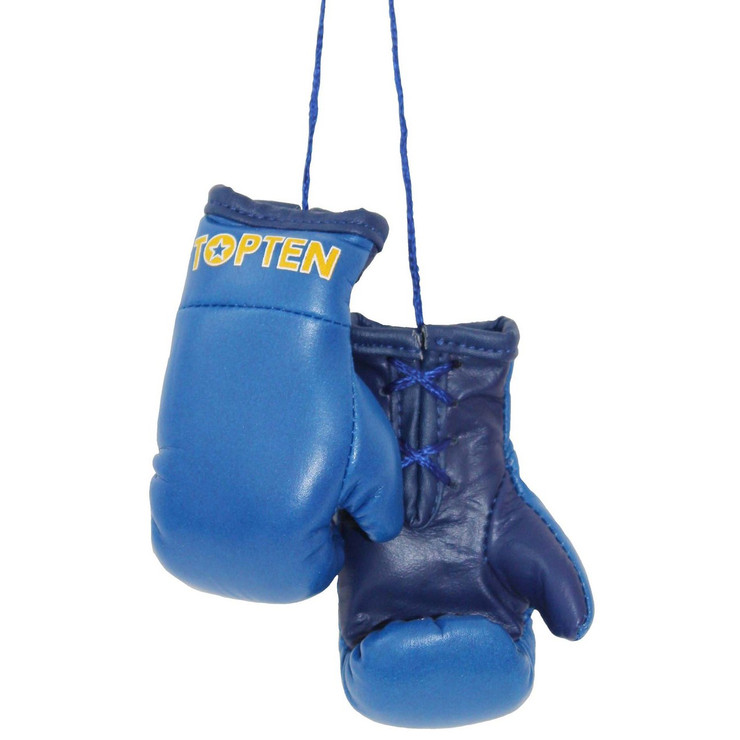 Top Ten Mini Boxing Gloves