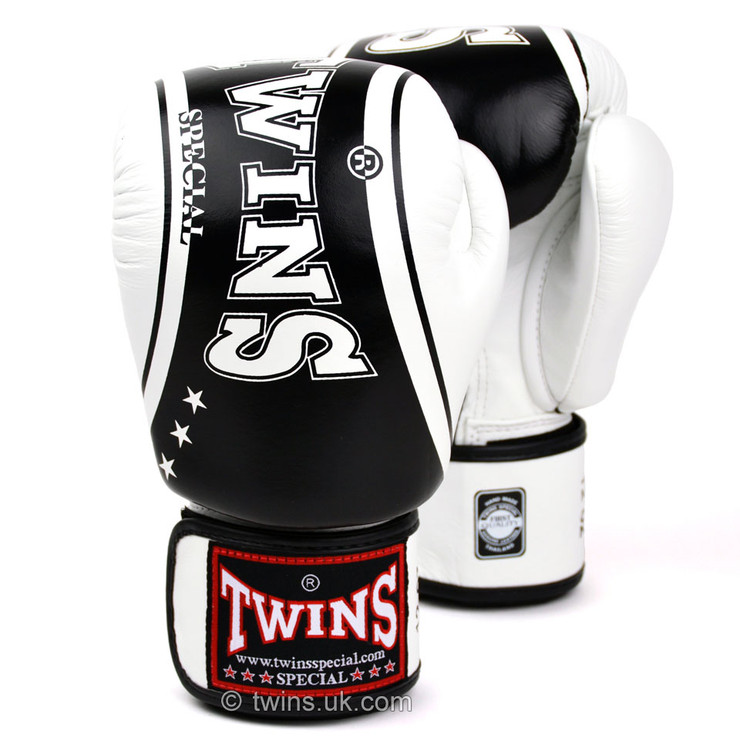 Twins FBGV-TW4 Classic Boxing Gloves
