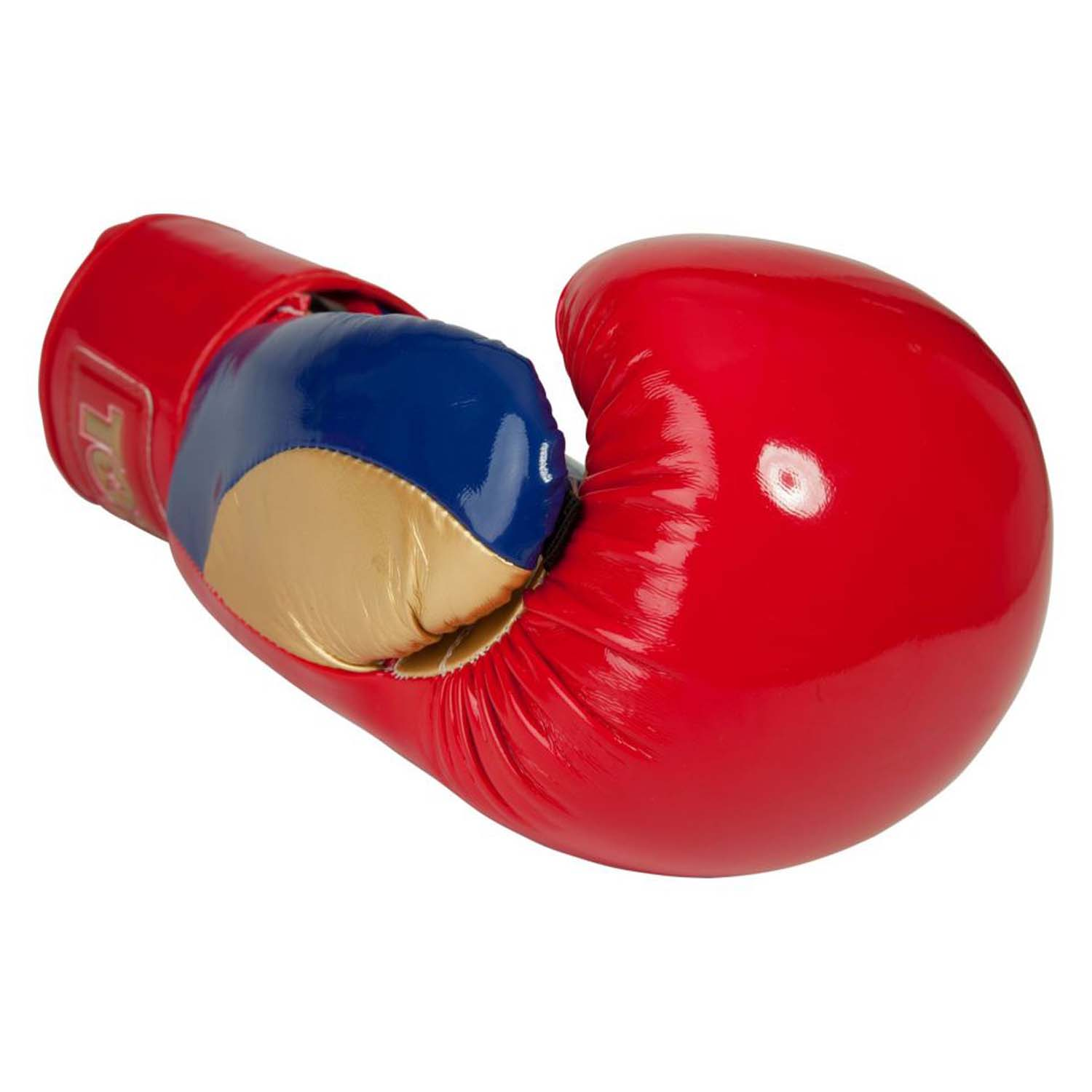TopTen Champion Boxing Gloves