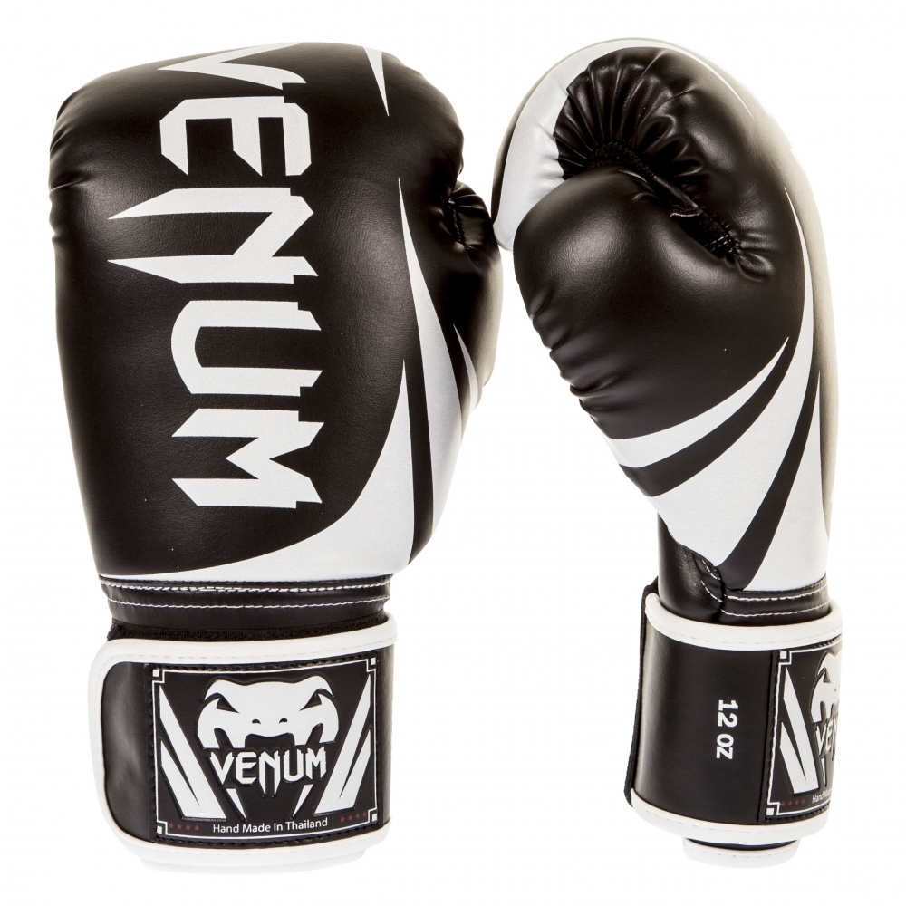 How to Choose the Best Boxing Gloves for Beginners