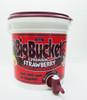 Big Bucket Premium Strawberry Margarita Mixer