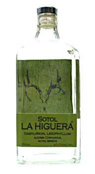 La Higuera Sotol Dasylirion, Leiophyllum