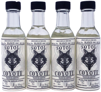 Sotol Coyote 38% alc 50ml 4 Pack