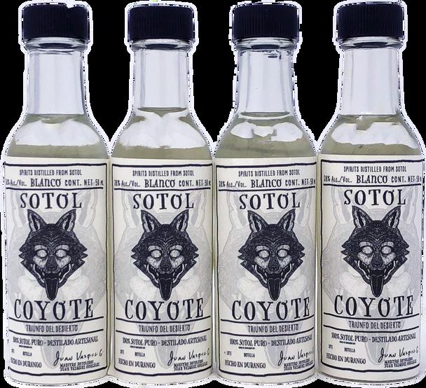 Sotol Coyote 38% alc 50ml 4 Pack