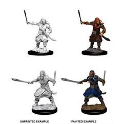 Dungeons & Dragons: Nolzur's Marvelous Unpainted Miniatures: Bandits