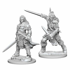 Pathfinder Battles Deep Cuts Unpainted Miniatures: Human Male Fighter