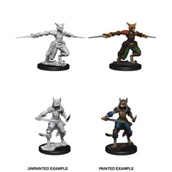 Dungeons & Dragons: Nolzur's Marvelous Unpainted Miniatures: Female Tabaxi Rogue