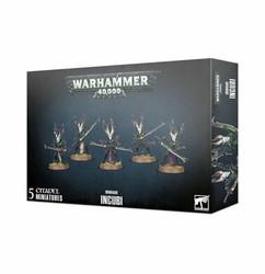 Warhammer 40K: Drukhari - Incubi