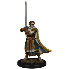 Dungeons & Dragons: Icons of the Realms Premium Miniatures - Male Human Cleric