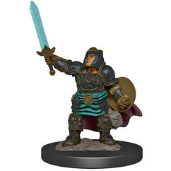 Dungeons & Dragons: Icons of the Realms Premium Miniatures - Female Dwarf Paladin