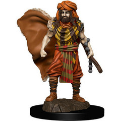 Dungeons & Dragons: Icons of the Realms Premium Miniatures - Male Human Druid