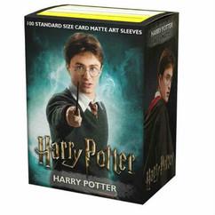 Dragon Shield: Harry Potter - Art, Matte Card Sleeves (100ct)