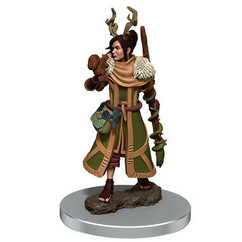 Dungeons & Dragons: Icons of the Realms Premium Miniatures - Female Human Druid (Wave 7) (PREORDER)