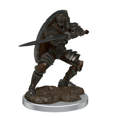 Dungeons & Dragons: Icons of the Realms Premium Miniatures - Male Warforged Fighter (Wave 7) (PREORDER)