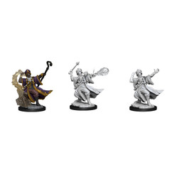 Dungeons & Dragons Miniatures: Frameworks - Male Human Wizard (Wave 1) (PREORDER)