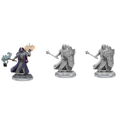 Dungeons & Dragons Miniatures: Frameworks - Male Human Cleric (Wave 1) (PREORDER)