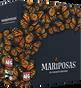 Mariposas (On Sale)