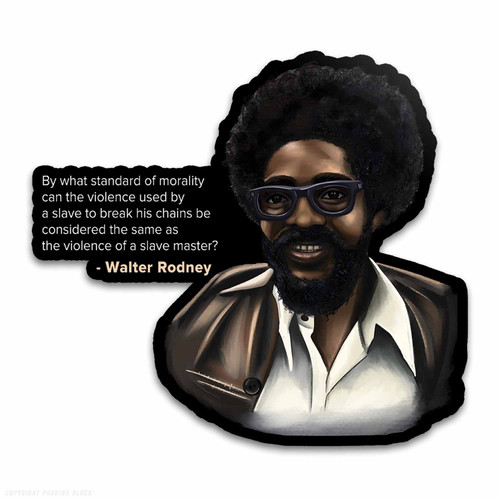 By What Standard - Walter Rodney Weatherproof Vinyl Decal
