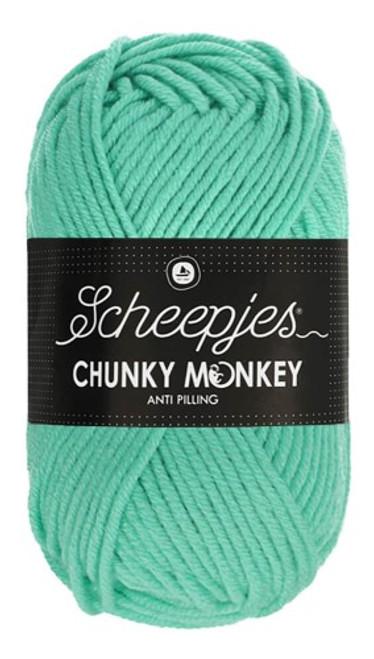 Scheepjes Chunky Monkey Aqua