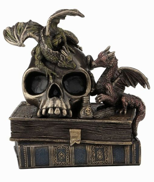 Steampunk Dragonlings on Skull and Books
