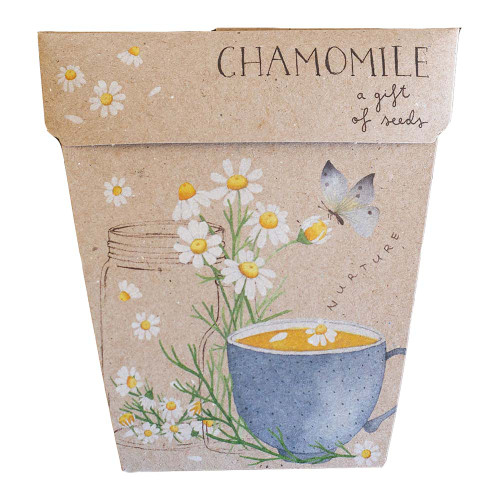 Sow 'n Sow Chamomile Gift of Seed