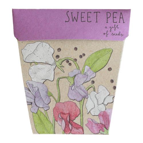 Sow 'n Sow Sweet Pea Gift Of Seed